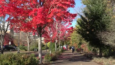 Oregon-People-On-A-Fall-Sidewalk