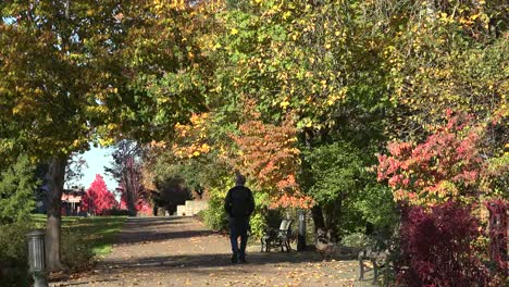 Oregon-People-Walking-On-Path-In-Autumn