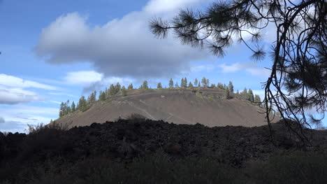 Marcos-De-Ramas-De-Pino-Oregon-Lava-Butte