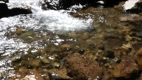 Oregon-Water-Falls-Into-Placid-Pool-Zoom-Out