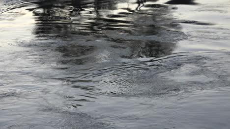 Oregon-Water-Patterns