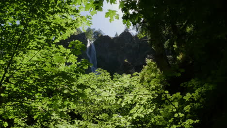 Oregon-Waterfall-Framed-By-Leaves-Sound-Pan