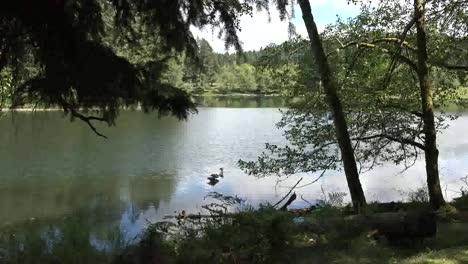 Washington-Passing-Horseshoe-Lake