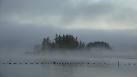 Washington-Island-In-Mist-Time-Lapse