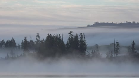 Washington-Mist-Changes-Color-In-Morning-Time-Lapse