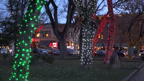 Arizona-Prescott-Trees-With-Christmas-Lights