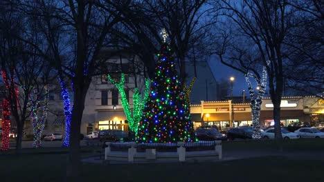 Arizona-Prescott-Zooms-On-Christmas-Tree