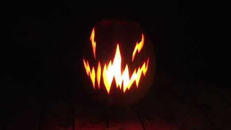 Halloween-Zooms-Ln-To-Jack-O-Lantern