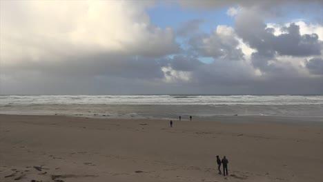 Oregon-Dog-Runs-On-Beach-And-Bird-Flies-Over