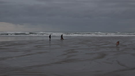 Oregon-Dogs-And-People-On-Beach