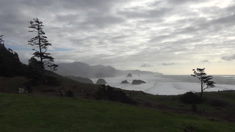 Oregon-Trees-Frame-View-At-Ecola-State-Park