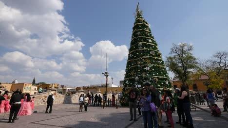 Mexico-Dolores-Hidalgo-Christmas-Tree