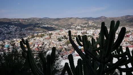 Mexico-Guanajuato-Cactus-Frames-City