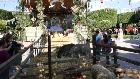 Mexico-San-Miguel-Animals-And-Manger-Scene