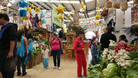 Mexico-San-Miguel-Interior-Market-With-Shoppers