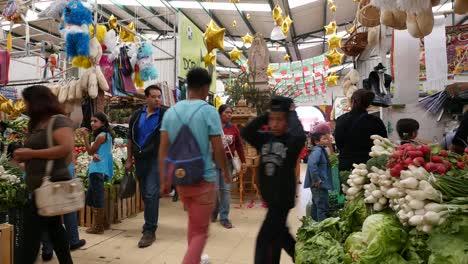 Mexico-San-Miguel-Interior-Market