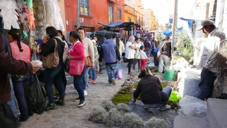 Mexico-San-Miguel-Market-At-Christmas