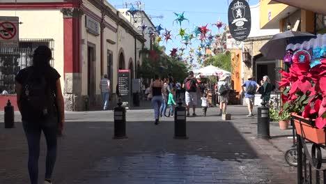 Mexico-Tlaquepaque-Poinsettas-And-People