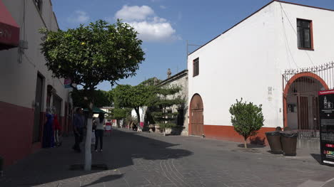 Mexico-Tlaquepaque-Street-With-Trees-And-People