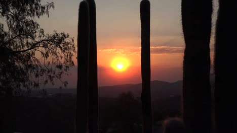 Mexico-Zooms-Out-From-Sun-To-Cactus