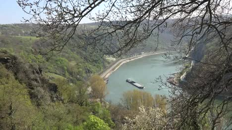Germany-Rhine-At-Loreley-Barge-Through-Branches