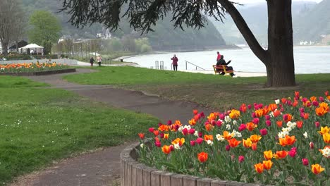 Germany-St-Goar-With-People-And-Tulips