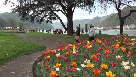 Germany-St-Goar-With-Tulips-And-Tourists