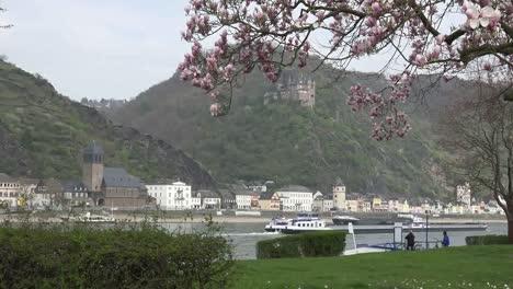 Germany-St-Goarhausen-And-Magnolia-Tree