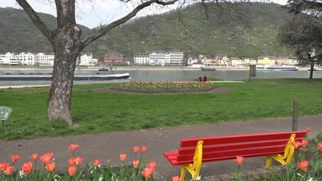 Germany-Bench-And-Tulips-At-St-Goar-On-The-Rhine