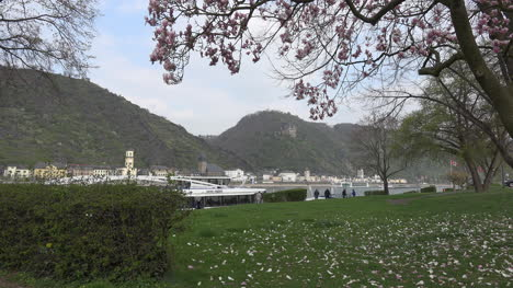 Germany-View-Of-Magnolia-And-St-Goarhausen