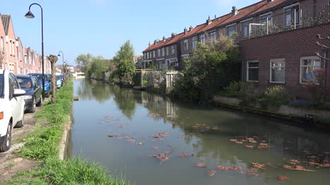Netherlands-Schoonhoven-Canal-With-Lily-Pads