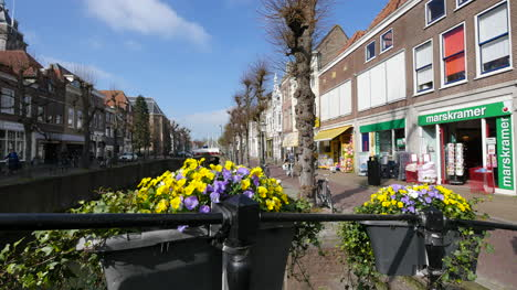 Netherlands-Schoonhoven-Flowers-Frame-Downtown-View