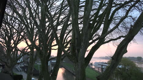 Netherlands-Plane-Trees-Along-A-Rhine-Distributary-At-Dawn