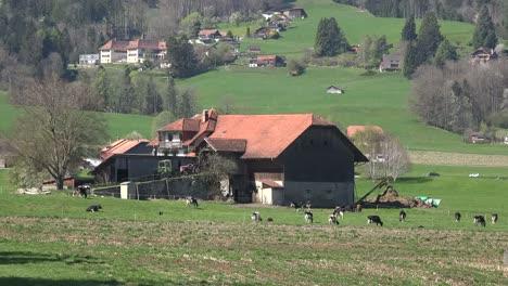 Switzerland-La-Gruyere-Farmhouse-With-Cows-And-Train