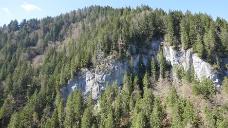 Switzerland-Rocks-And-Forest