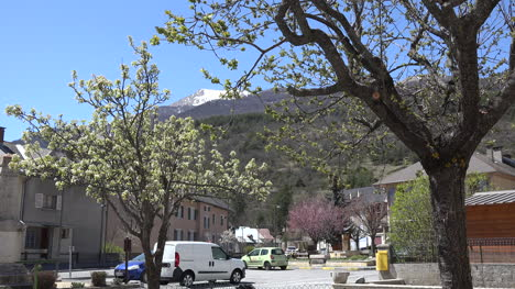France-Condamine-Chatelard-Town-View-With-Blooming-Trees