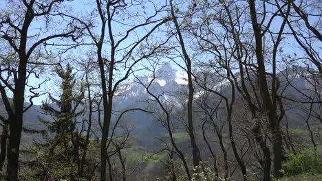 France-Gran-Tete-De-l-Obiou-View-Through-Barren-Spring-Branches