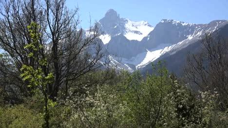 France-Gran-Tete-De-l-Obiou-With-Pretty-Spring-Trees