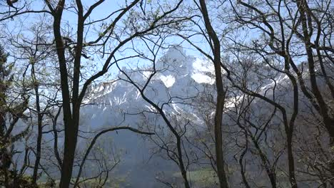 France-Gran-Tete-De-l-Obiou-Zoom-In-Past-Barren-Spring-Branches