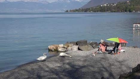 Francia-Lac-Leman-Cisnes-Y-Personas-En-La-Playa