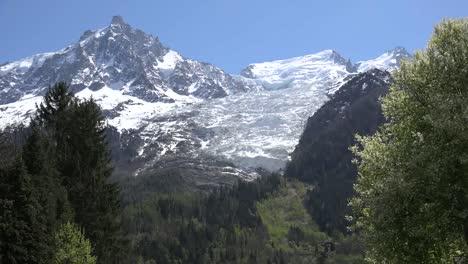 France-Mont-Blanc-Glacier-Framed-By-Spring-Tree-Leaves