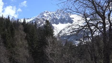 France-Mont-Blanc-View-With-Tree-Branches