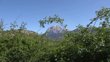 France-Shrub-Frames-Alpine-Peak-Above-Lac-Serre-Poncon