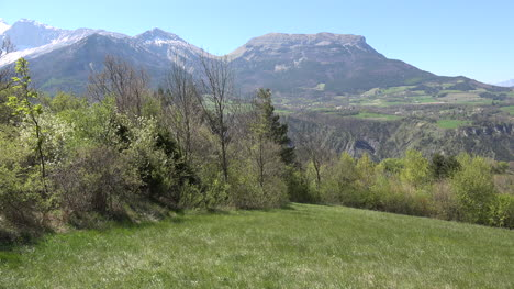 France-Spring-Trees-And-View-Toward-La-Malpasset