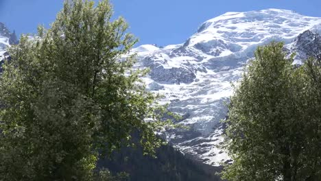France-Spring-Trees-Frame-A-View-Of-A-Mont-Blanc-Glacier