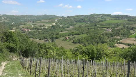 Italy-Landscape-With-Grapevines-On-Hills