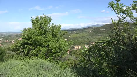 Italy-Vegetation-In-Breeze-Frames-View