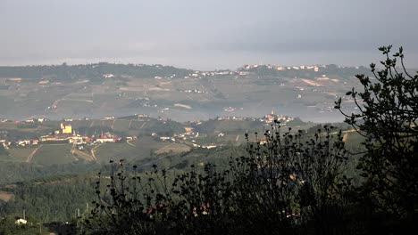 Italy-Vegetation-In-Silhouette-Frames-View-Of-Langhe-Hills