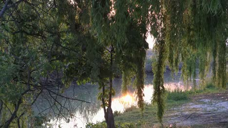 Italy-Sun-On-Water-By-Willows