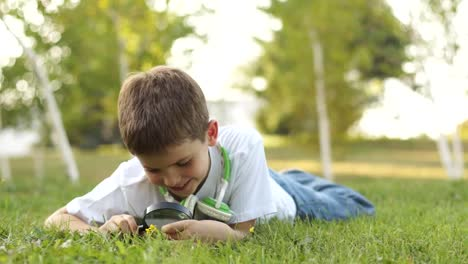 Boy-With-Magnifying-Glass-Looking-At-Flower-Outdoors